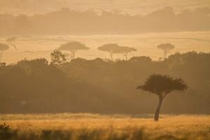 Sonnenaufgang © Robert Sommer