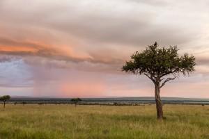 SIGMA Fotoreise 2015 - Kenia