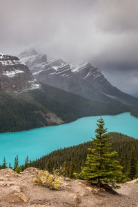 Peyto Lake © Robert Sommer
