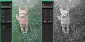 SIGMA Photo Pro | Farbe-Monochrom
