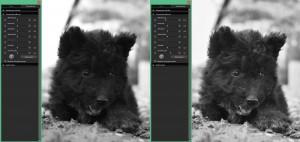 SIGMA Photo Pro | Der Fill-Light-Regler im Fokus