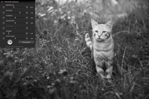 SIGMA Photo Pro | Kontrasterhöhung