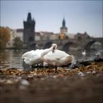 Ergebnisse Produkttest mit fotocommunity.de © Oliver Agit