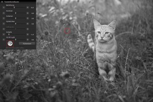 SIGMA Photo Pro | Einstellung des Pipette-Werkzeugs