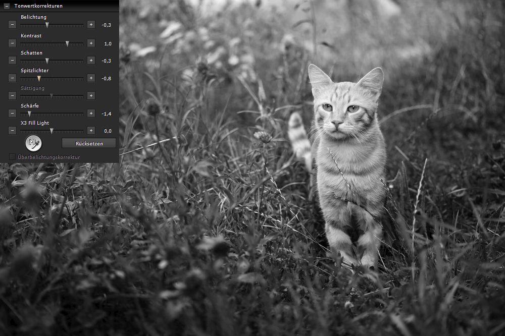 SIGMA Photo Pro | Tonwertkorrekturen durch Schatten und Spitzlichter