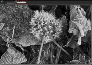 SIGMA Photo Pro | Wechseln des Anzeige-Modus