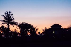Schattenspiele zur Blauen Stunde | Die blaue Stunde