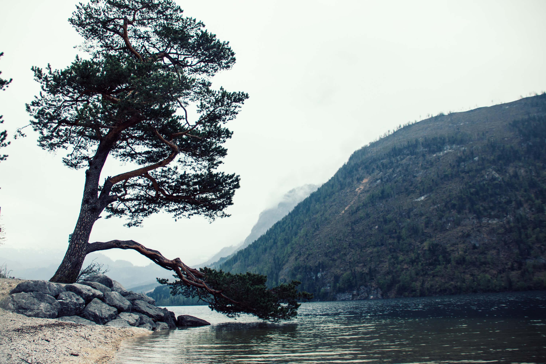 Naturschönheiten abgelichtet | Landschaftsfotografie