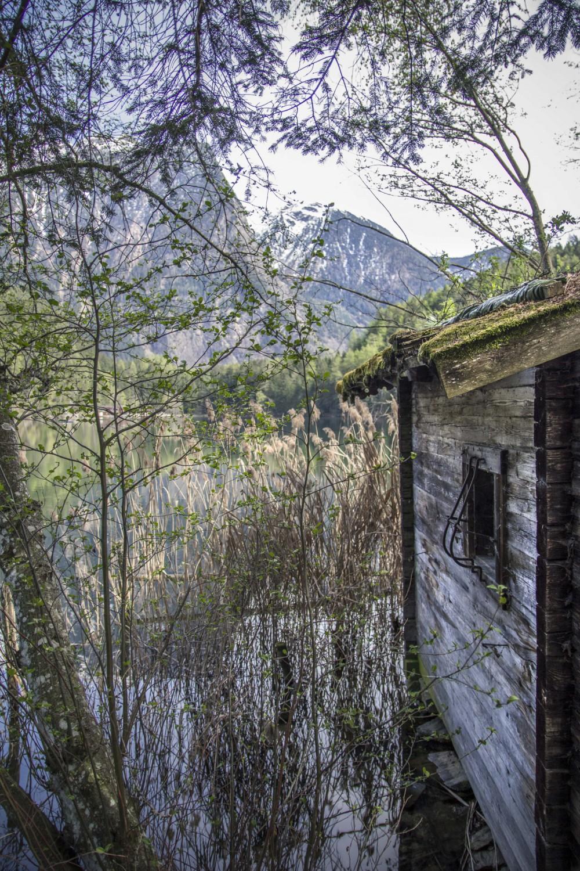 Hütte am See | Seelandschaft