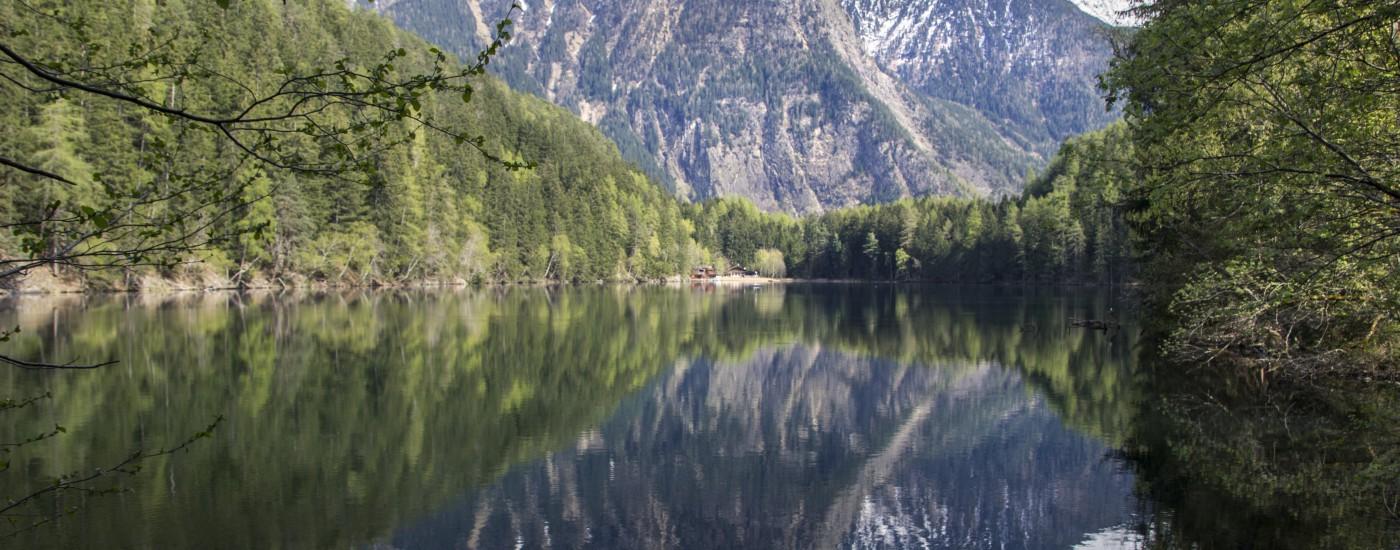 Reflexionen | Seelandschaft