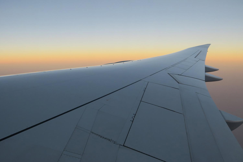 Flug ©Andreas Winkel