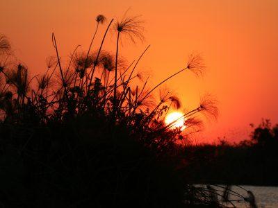 Sonnenuntergang ©Andreas Winkel