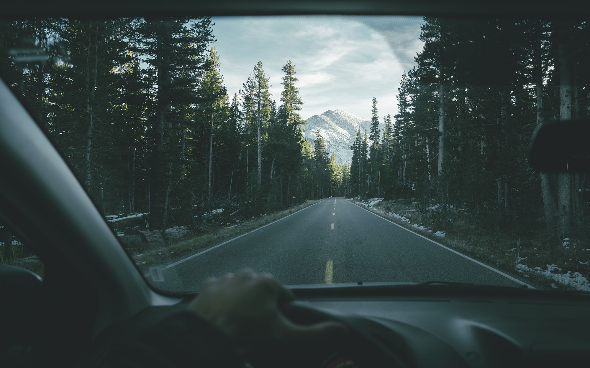 Road © Max Muench