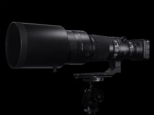 SIGMA 500mm F4 DG OS HSM | Sports