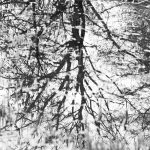 Spiegelungen © Antonia Moers