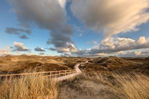 Dünenlandschaft © Robert Sommer