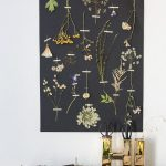 Sommerblumen fotografieren © Sylwia Gervais