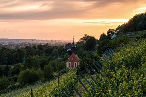 Königliche Weinberge © onlymoments