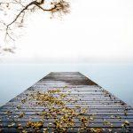 Ein nebeliger Morgen am See © Sueleyman Senkul