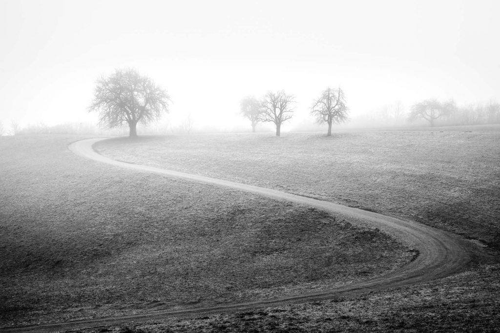 Landschaftsfotografie © Alois Eckl