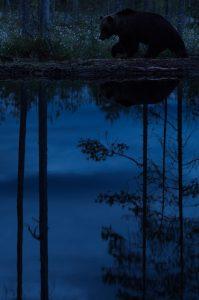 © Sven Herdt