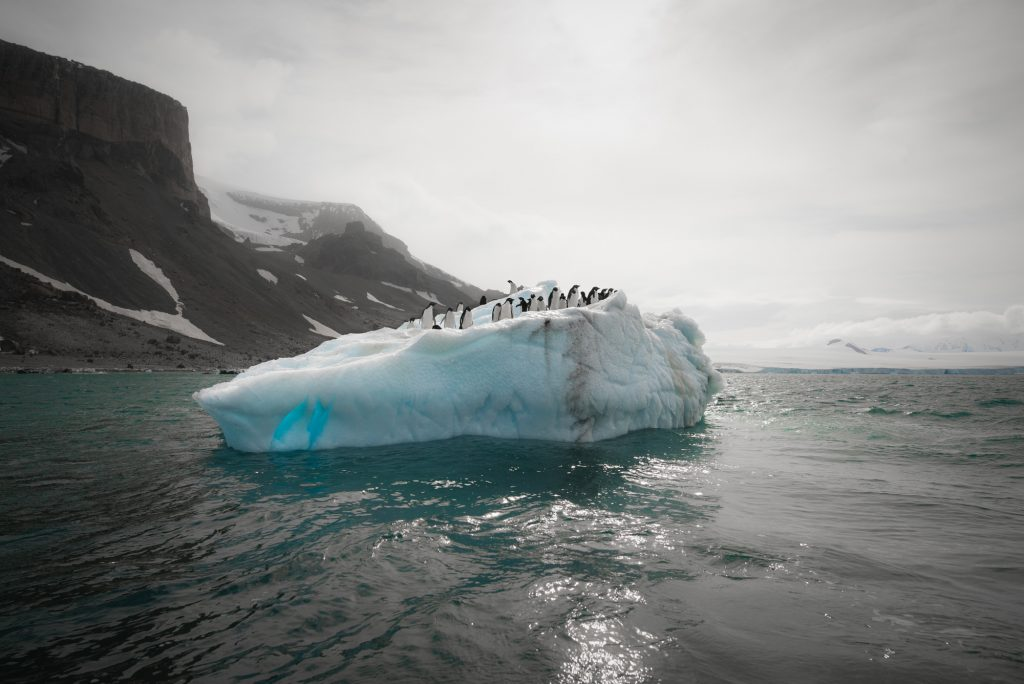 Antarctica © Hubert Neufeld