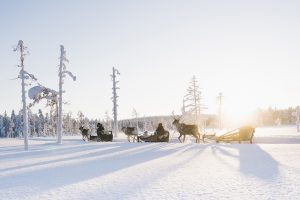 Lappland © Steven Weisbach
