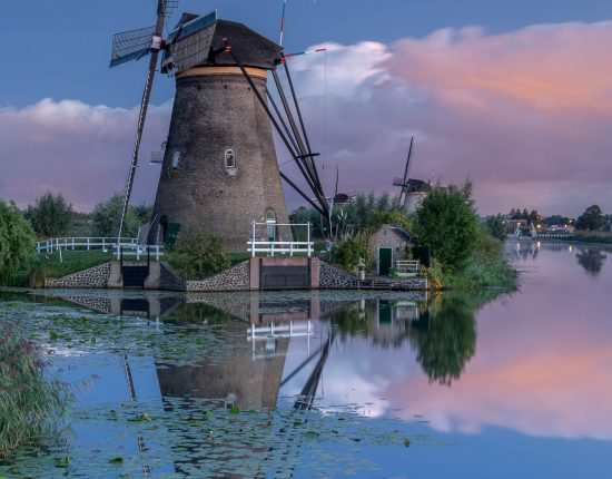 Naturfotografie in den Niederlanden mit SIGMA Objektiven © Robert Sommer