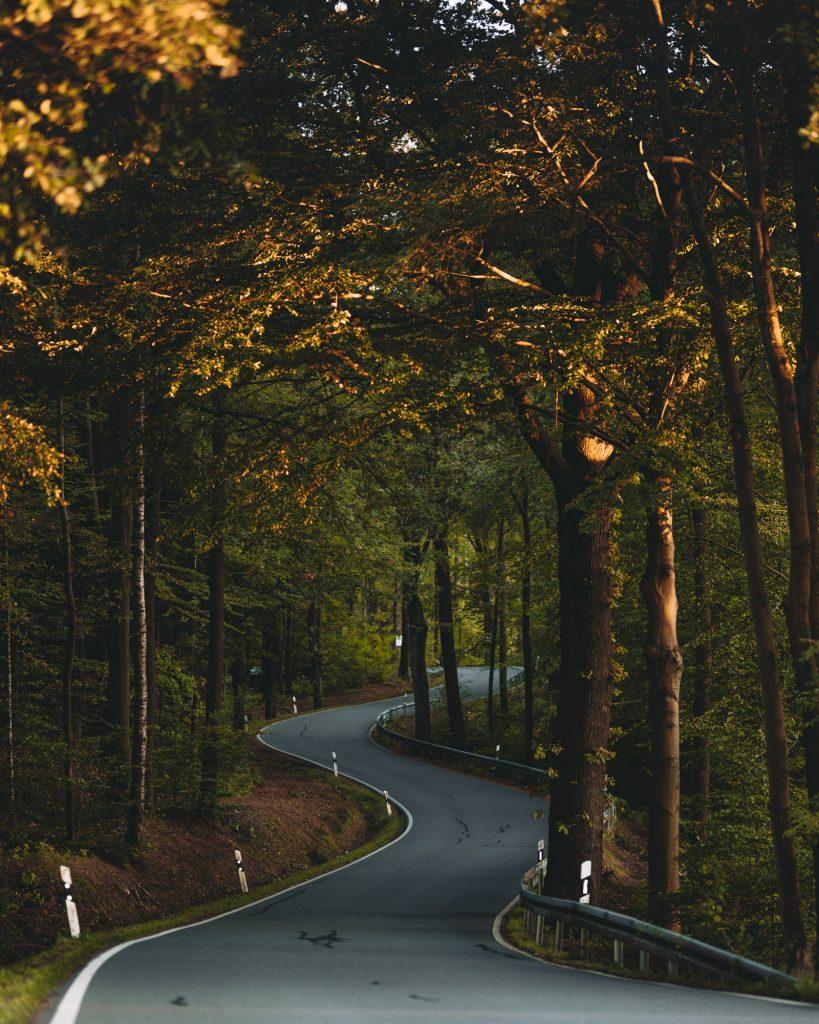 Mein Herbst in der sächsischen Schweiz © Steven Weisbach