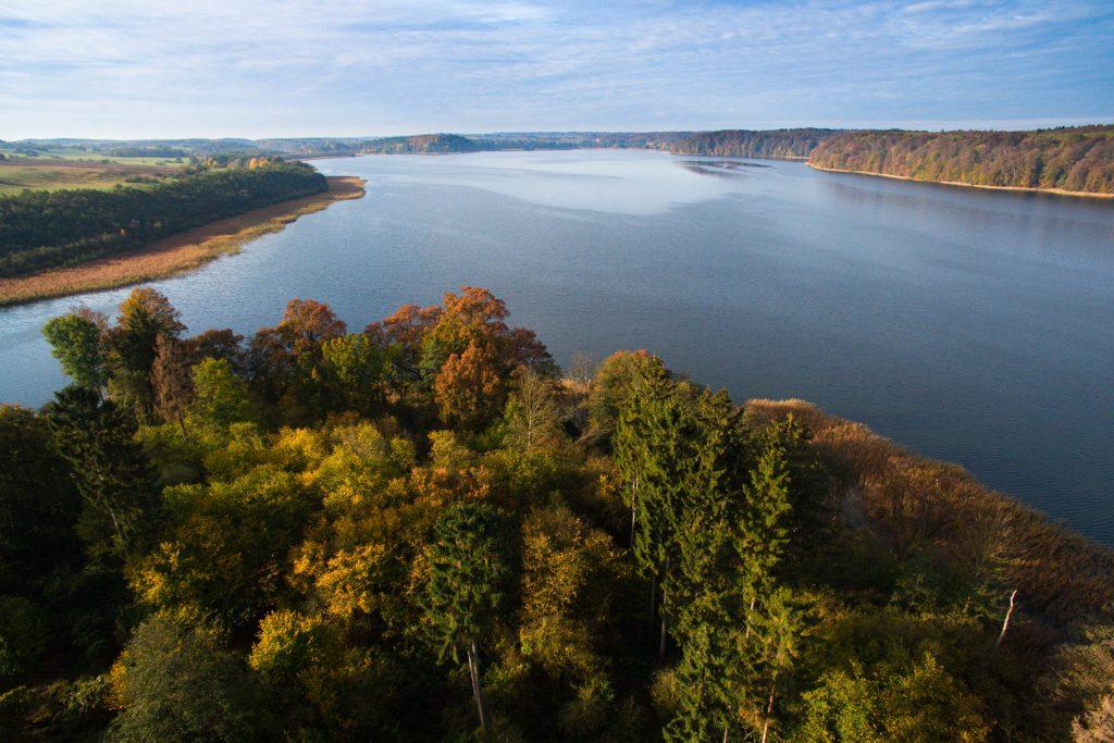Natur- und Tierfotografie im Naturpark Feldberger Seenlandschaft