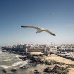 Mit leichtem Gepäck nach Marokko - Das 35mm F1,4 DG HSM | Art als Reisebegleiter © Fabian Stoffers