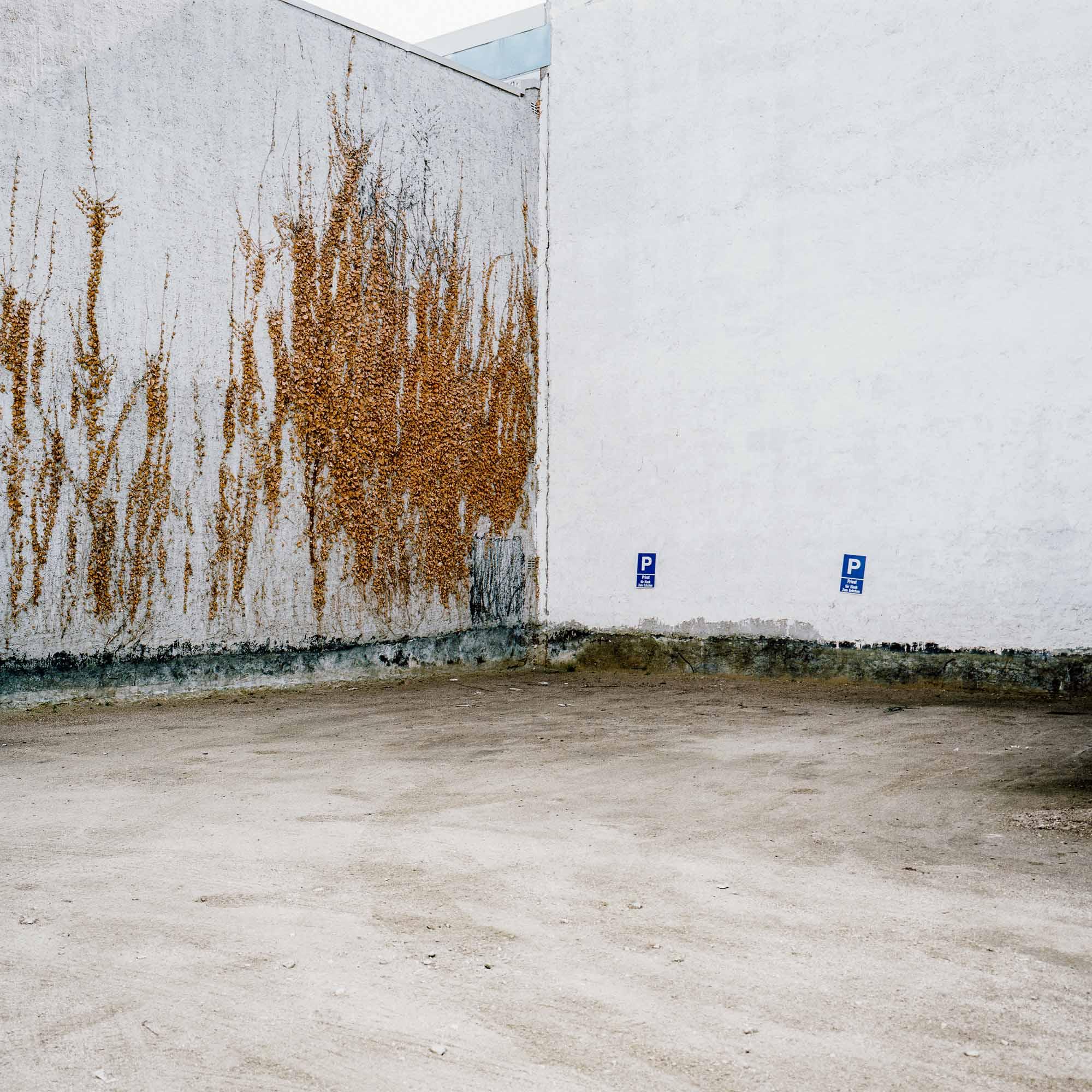 Im Gespräch mit Fabian Stransky © Fabian Stransky