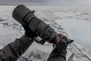 Arktisreise mit dem SIGMA 150-600mm F5-6,3 DG DN OS   Sports © Michael Ginzburg