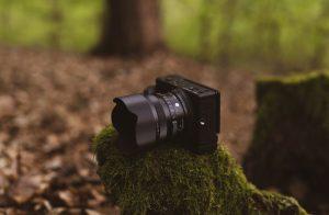 Die Kleine und das Biest –24mm F3,5 DG DN   Contemporary und fp L im Einsatz © Christopher Schmidtke