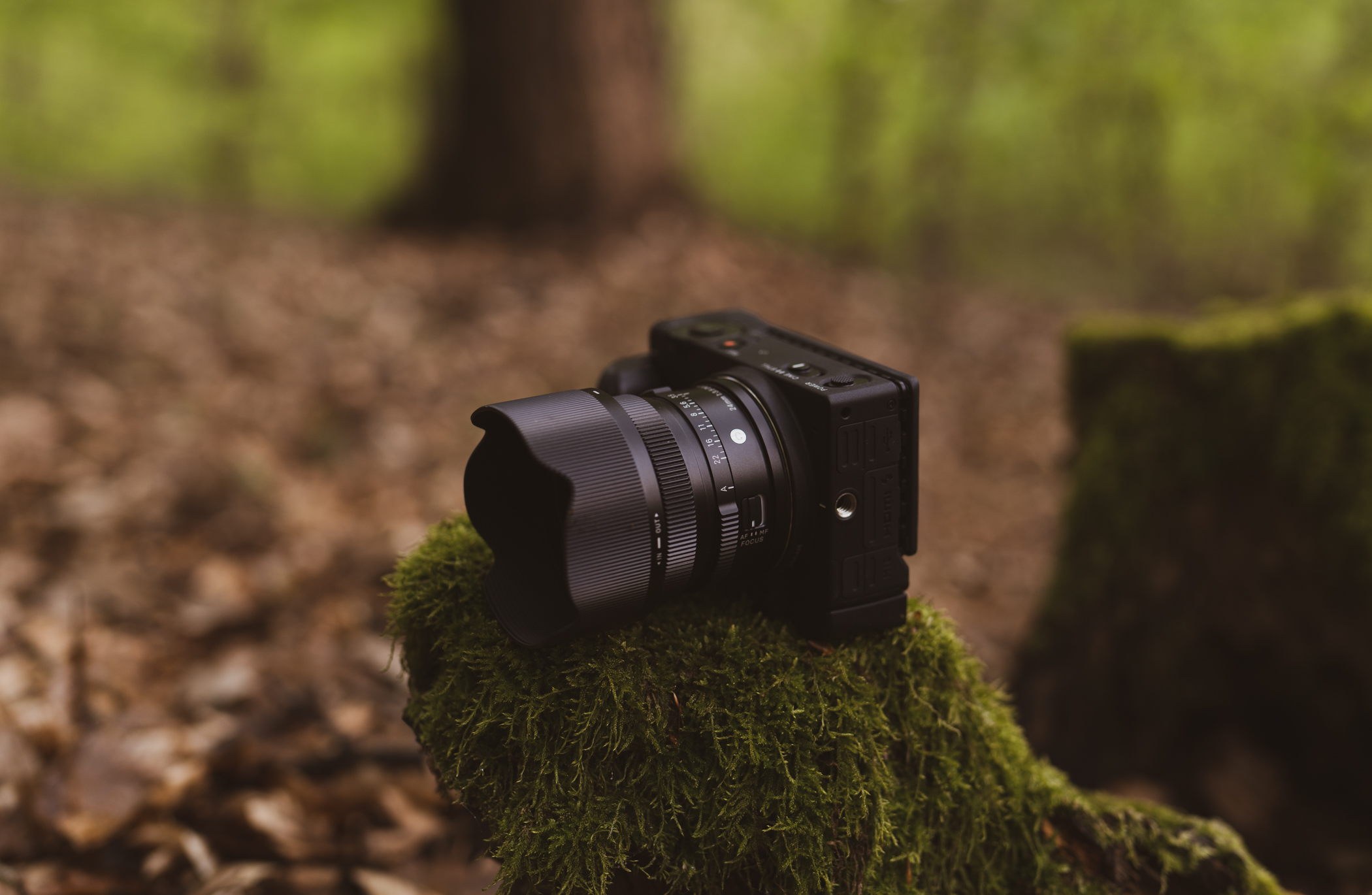 Die Kleine und das Biest –24mm F3,5 DG DN | Contemporary und fp L im Einsatz © Christopher Schmidtke