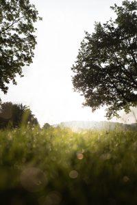 Unterwegs mit dem neuen SIGMA 24mm F2 DG DN | Contemporary © Maik Lipp